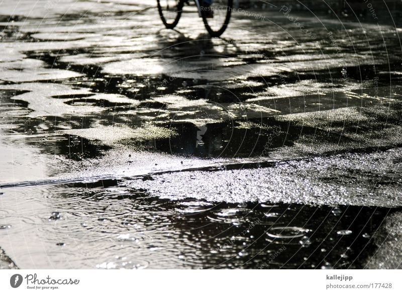 Human being Water Street Style Lanes & trails Rain Bicycle Weather Wet Transport Lifestyle Driving Leisure and hobbies Traffic infrastructure Damp