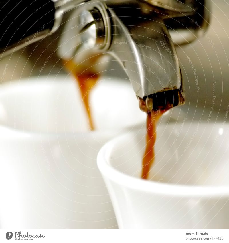 Energy industry Coffee Gastronomy Café Beverage Beans Coffee bean Menu Run in