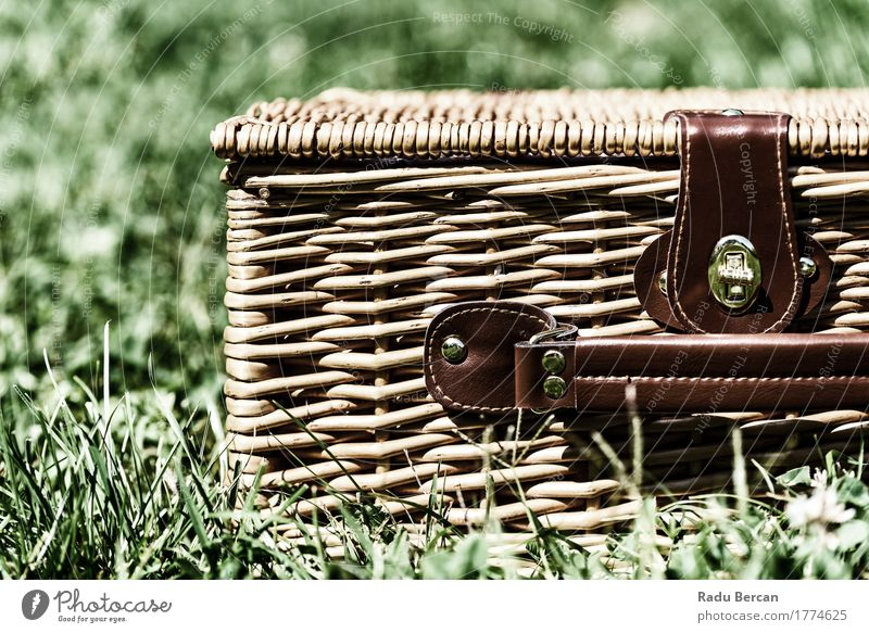 Picnic Basket Hamper With Leather Handle In Green Grass Leisure and hobbies Vacation & Travel Summer Nature Garden Park Container Discover Brown Adventure