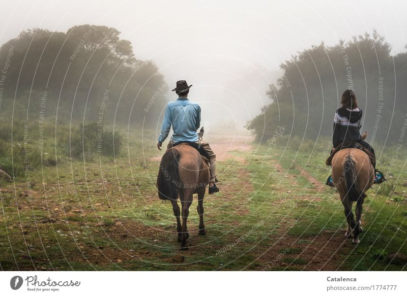 Music | is the clatter of hooves in my ears Ride Human being Masculine Feminine Young woman Youth (Young adults) Young man 2 Landscape Drops of water Autumn Fog