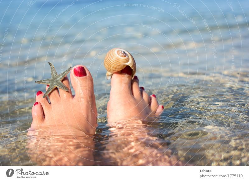 Summer Lifestyle Happy Beautiful Pedicure Relaxation Sun Beach Ocean Human being Girl Woman Adults Feet Sand Red water background Top Vantage point Barefoot