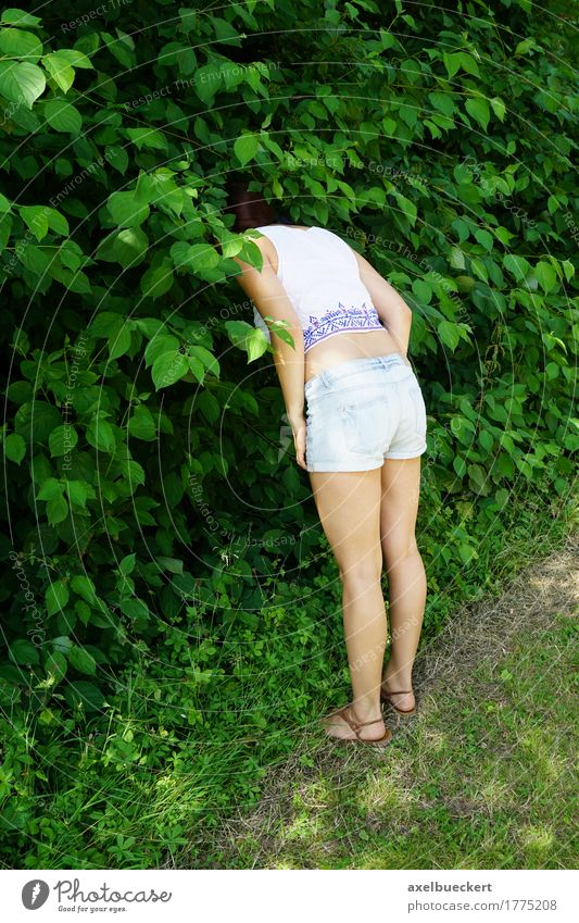woman hiding head in bushes Lifestyle Leisure and hobbies Playing Human being Girl Young woman Youth (Young adults) Woman Adults 1 18 - 30 years Nature Plant