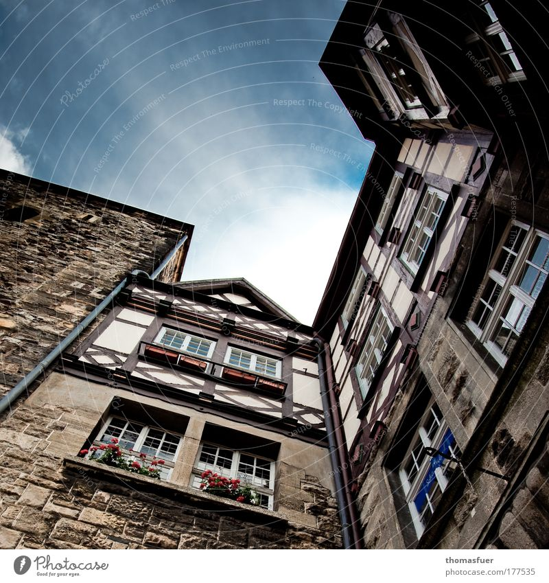 aspiring Colour photo Exterior shot Deserted Copy Space top Day Light Shadow Contrast Worm's-eye view Wide angle Tourism City trip Eisenach Thuringia Town