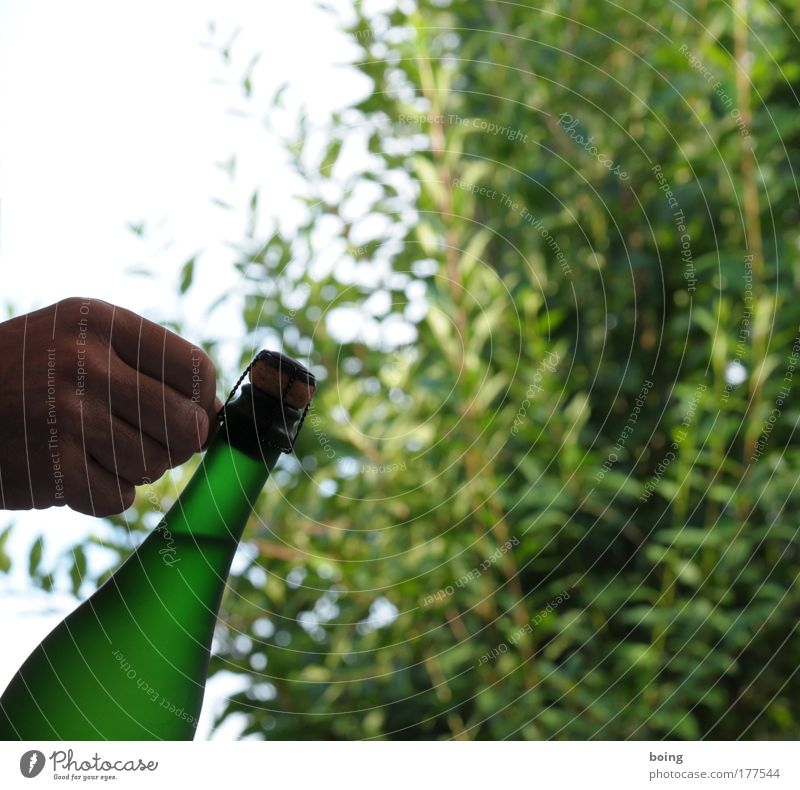Hand Joy Cold Garden Feasts & Celebrations Birthday Success Beverage Drinking Gastronomy Wine Luxury Bottle Alcoholic drinks Undo Sparkling wine