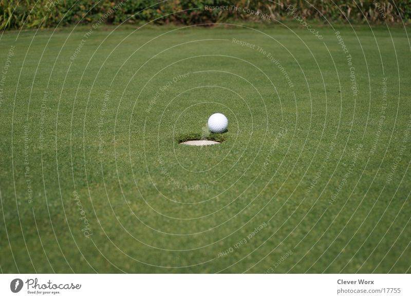 Green Grass Places Golf Golf ball