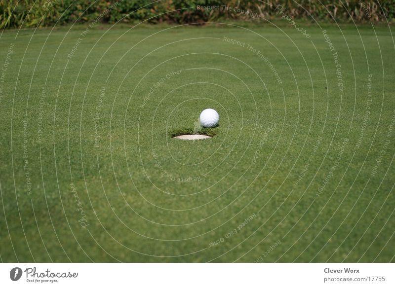 Green Grass Places Golf Golf ball