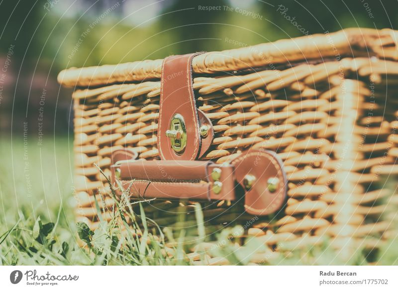 Picnic Basket Hamper With Leather Handle In Green Grass Nature Vacation & Travel Plant Colour Summer Green Spring Meadow Grass Garden Brown Leisure and hobbies Vantage point Retro Vintage Dinner
