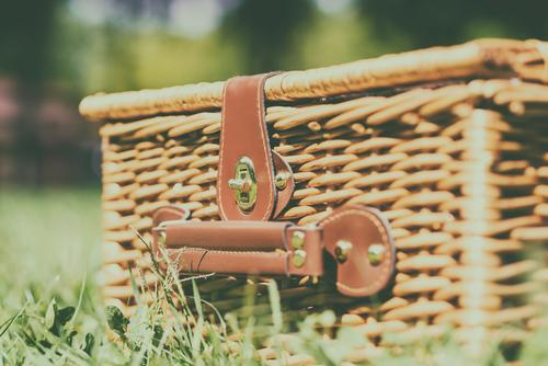 Picnic Basket Hamper With Leather Handle In Green Grass Nature Vacation & Travel Plant Colour Summer Spring Meadow Garden Brown Leisure and hobbies
