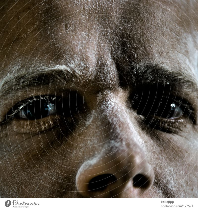 Face Eyes Nutrition Work and employment Hair and hairstyles Head Skin Adults Food Masculine Nose Construction site Grain Craftsperson Craft (trade) Baked goods