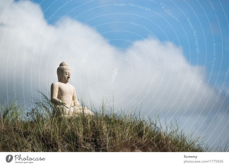 serenity Relaxation Calm Meditation Vacation & Travel Tourism Summer Nature Sky Clouds Beautiful weather Grass North Sea Island Norderney Dune Sit Serene