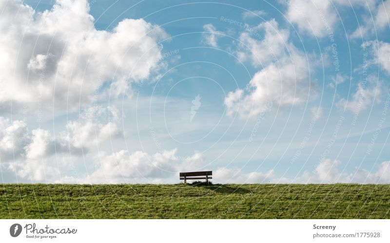 Sky Nature Vacation & Travel Summer Sun Landscape Clouds Calm Far-off places Grass Coast Freedom Tourism Trip Beautiful weather Bench