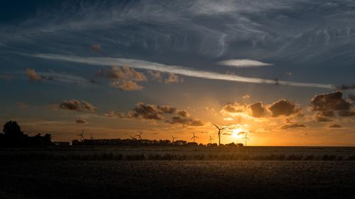 In the evening, at the golden dike... Vacation & Travel Tourism Energy industry Wind energy plant Landscape Sky Clouds Sunrise Sunset Sunlight Summer