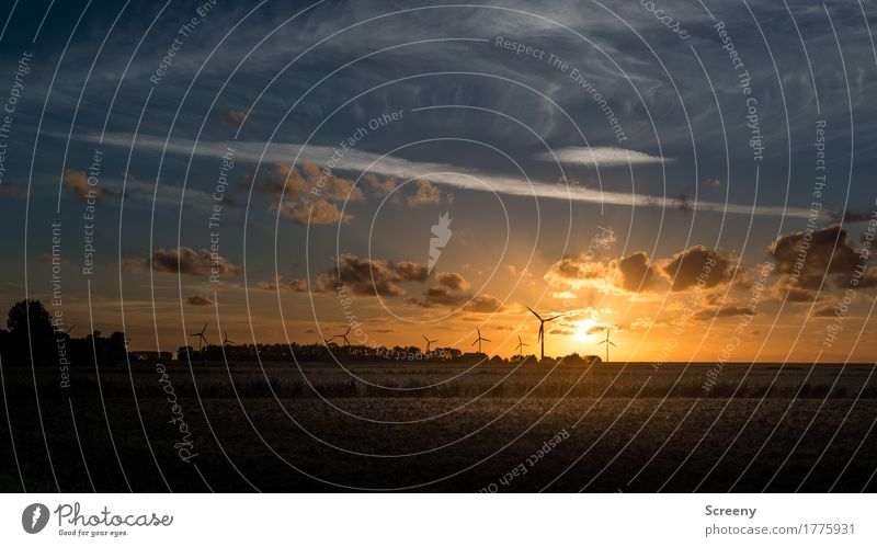 Sky Vacation & Travel Summer Flower Landscape Clouds Environment Tourism Illuminate Energy industry Beautiful weather Serene Village Wind energy plant North Sea