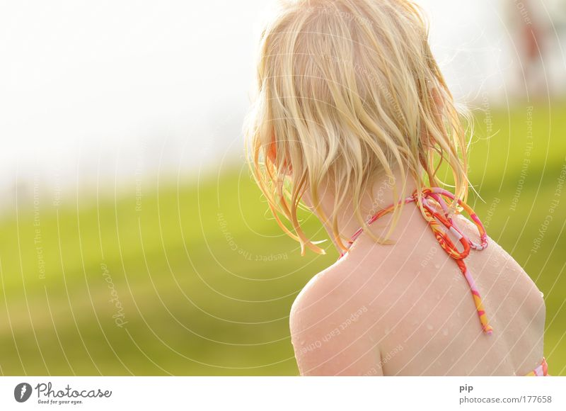 summer Colour photo Exterior shot Copy Space left Sunlight Looking back Joy Hair and hairstyles Swimming & Bathing Playing Summer Summer vacation Garden