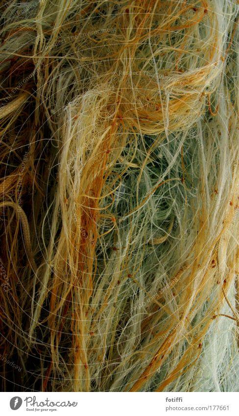 Ocean Wet Rope Net Wild Muddled Knot Fishery Fishing boat Nylon Thoughtless
