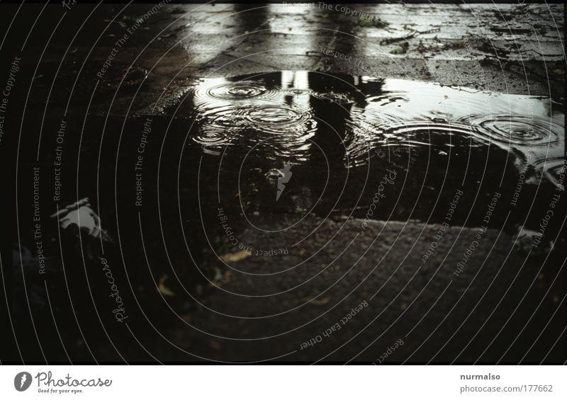 Water Summer Environment Movement Jump Rain Art Wet Places Natural Drops of water Climate Circle To fall Umbrella