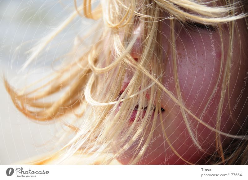 Human being Beautiful Summer Face Life Feminine Head Hair and hairstyles Happy Wind Blonde Safety (feeling of) Breeze Tousled