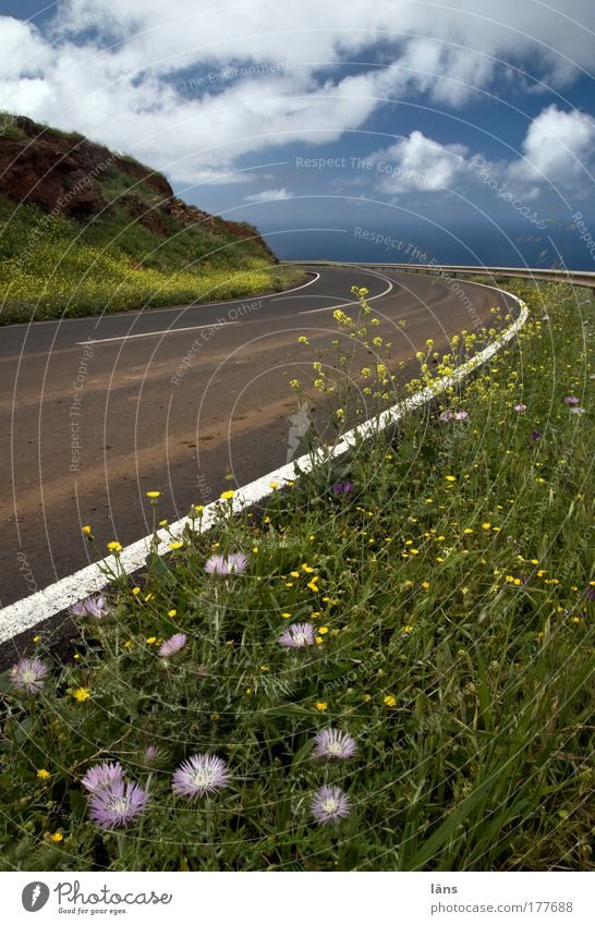 Nature Sky Plant Vacation & Travel Clouds Street Blossom Grass Mountain Spring Landscape Air Line Contentment Environment Signs and labeling