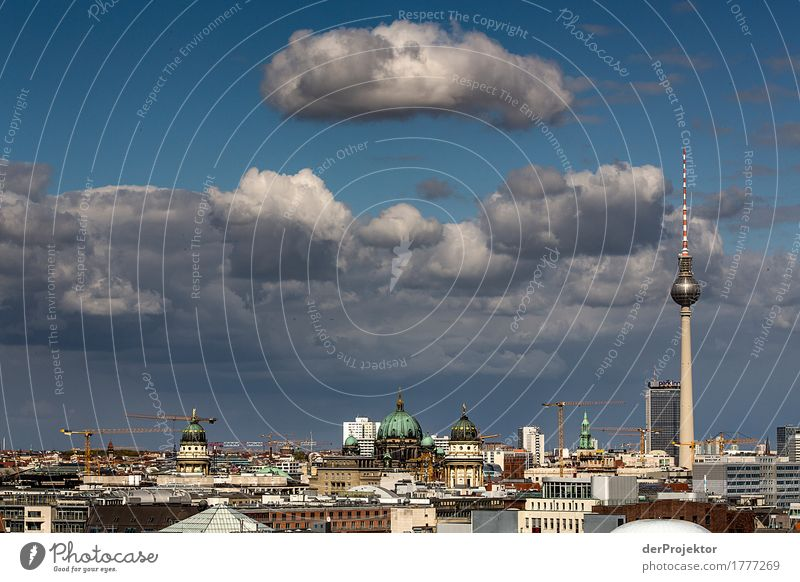 Berlin skyline in summer Vacation & Travel Tourism Trip Far-off places Freedom Sightseeing City trip Environment Clouds Summer Capital city Skyline