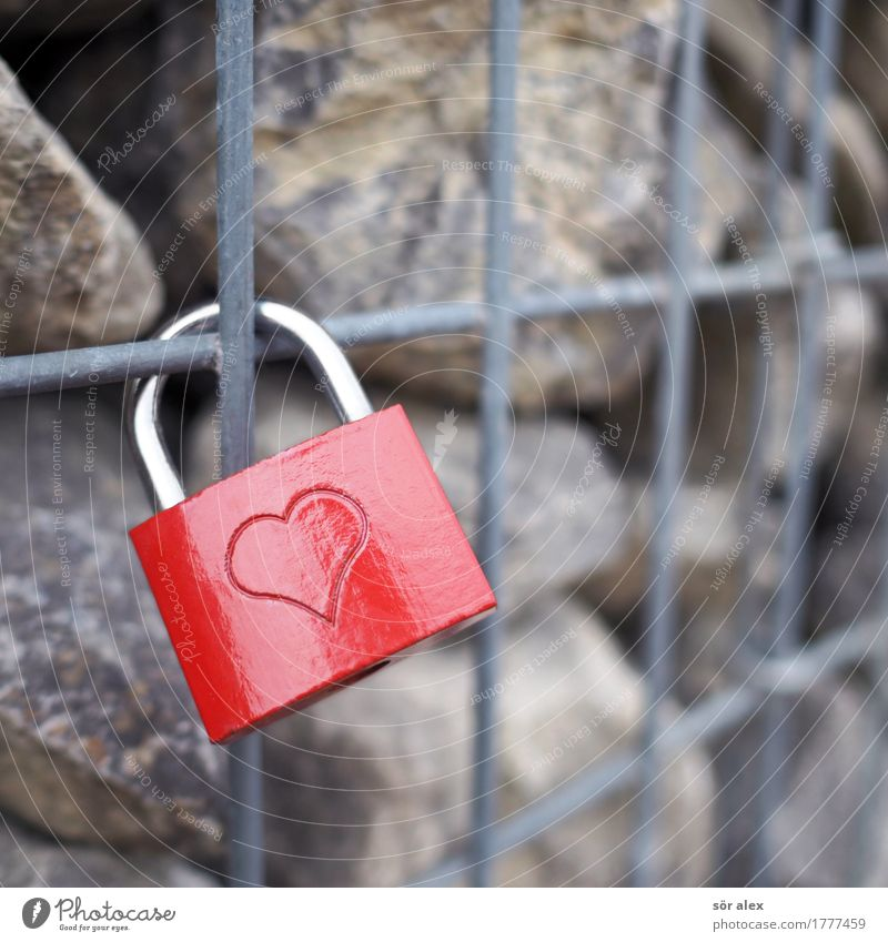 rotesschlossmitherzang lattice wall Lock Grating Wall (barrier) Stone Red Happy Happiness Spring fever Together Love Romance Infatuation Symbols and metaphors