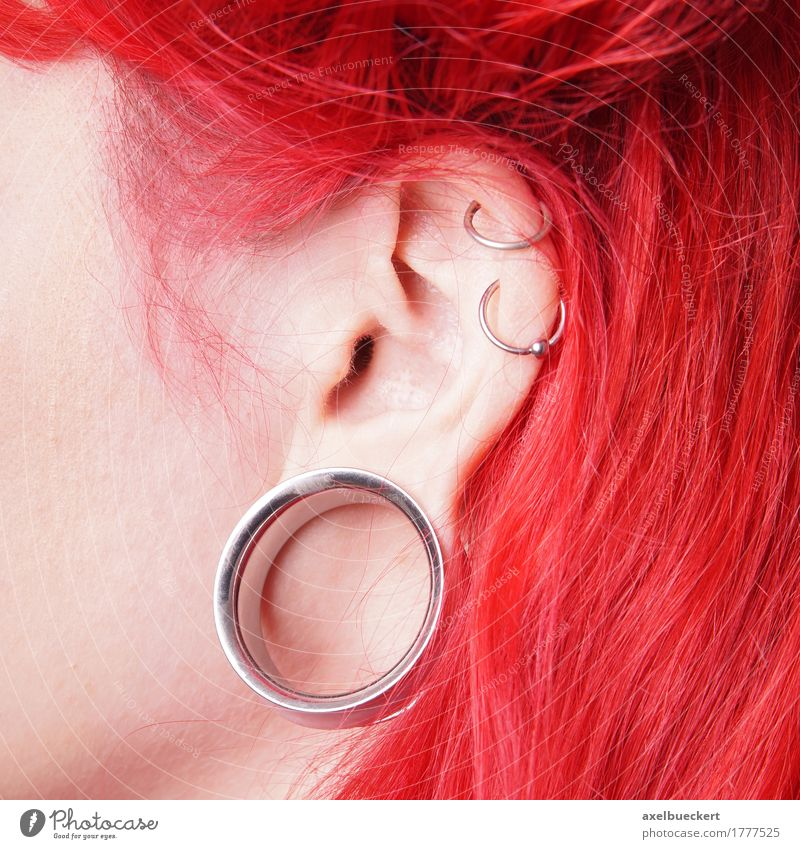 stretched earlobe piercing or Flesh Tunnel Lifestyle Beautiful Feminine Young woman Youth (Young adults) Woman Adults Ear Youth culture Subculture Fashion
