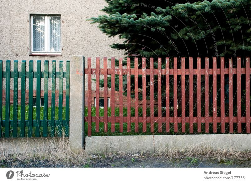 The window to the fence Colour photo Subdued colour Exterior shot Deserted Day Contrast Living or residing Flat (apartment) House (Residential Structure) Tree