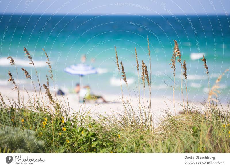 strandidylle Vacation & Travel Tourism Far-off places Summer Summer vacation Sun Sunbathing Beach Ocean Island Waves Human being 2 Landscape Cloudless sky