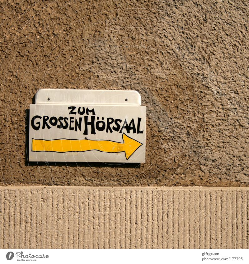 Yellow Wall (building) Teacher School Wall (barrier) Signs and labeling Academic studies Education Information University & College student Arrow Science & Research Typography Direction Examinations and Tests Road marking