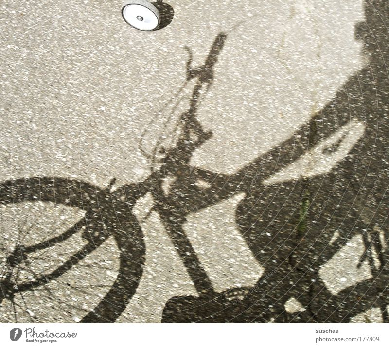a very casual ride ... Subdued colour Detail Day Light Shadow Sunlight Means of transport Cycling Street Lanes & trails Bicycle Concrete Serene Mobility Wheel