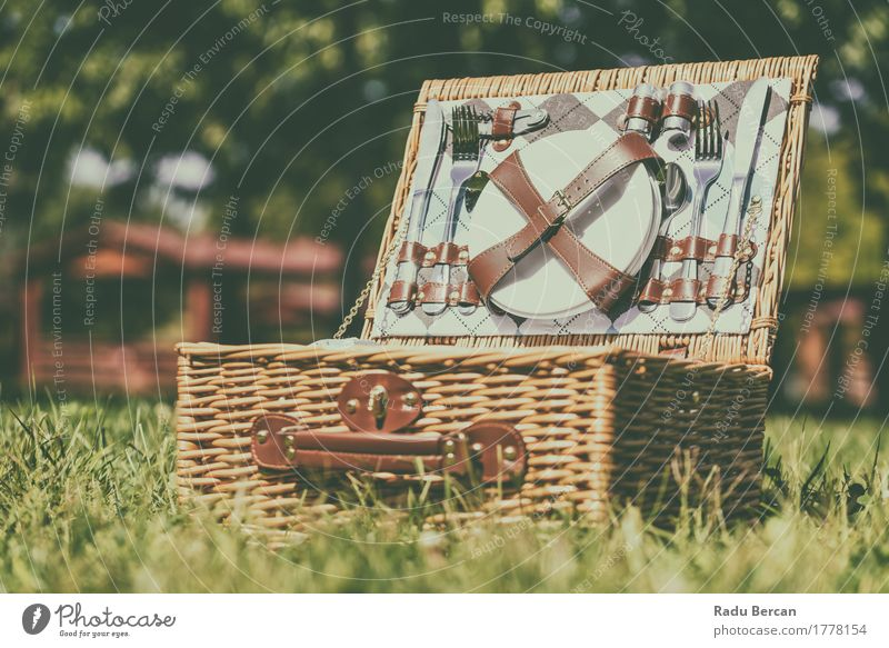 Opened Picnic Basket With Cutlery In Spring Green Grass Nature Vacation & Travel Summer Garden Brown Plate Top Knives Lunch Container Spoon