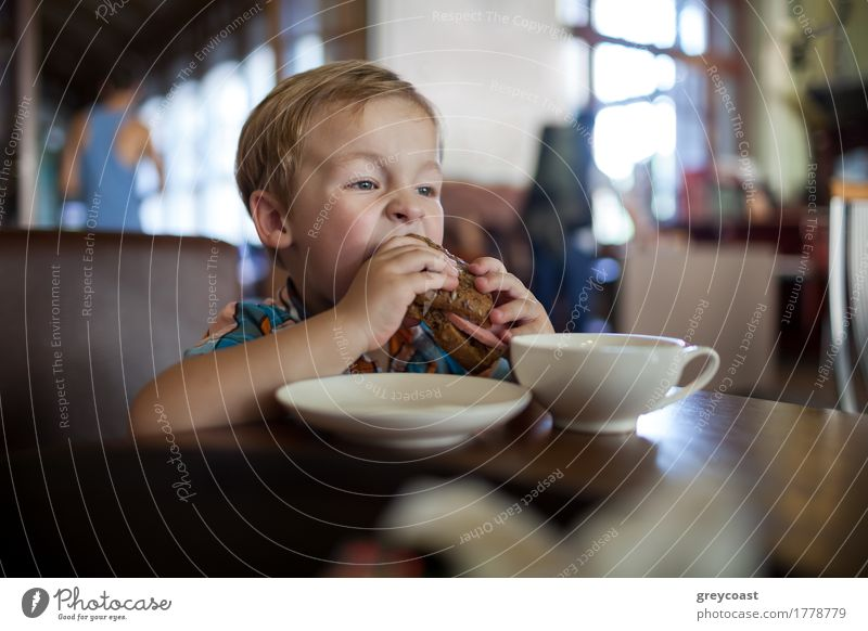 Little boy having sandwich in a cafe Sausage Bread Breakfast Lunch Dinner Tea Child Boy (child) 1 Human being 1 - 3 years Toddler Blonde Small Optimism Appetite