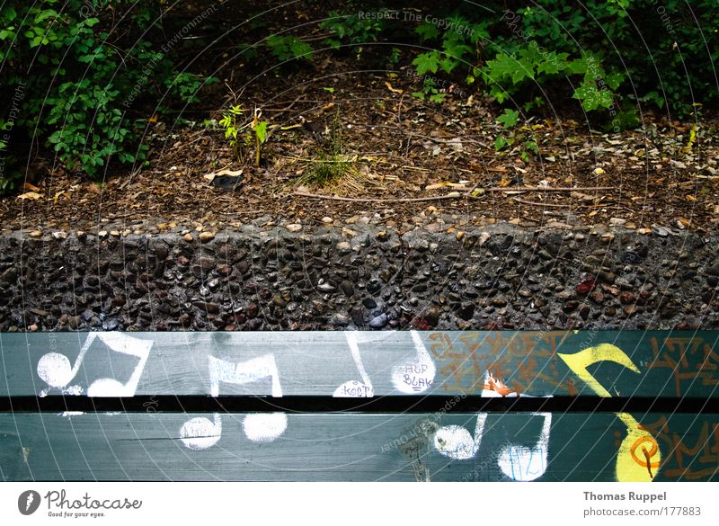 Nature White Green Plant Yellow Music Graffiti Sign Art Musical notes Song Park bench Listen to music