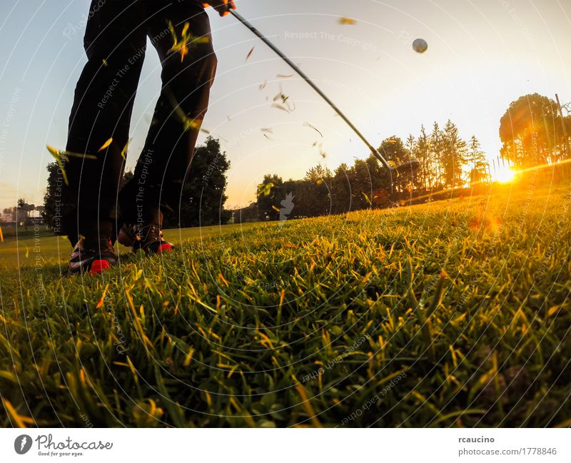 Golf: short game using a wedge iron club. Lifestyle Joy Relaxation Leisure and hobbies Playing Vacation & Travel Sun Club Disco Sports Success Human being Man