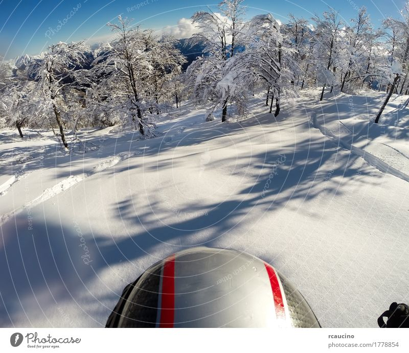 Skiing in fresh snow. POV using action cam on the helmet. Human being Nature Man Beautiful White Landscape Joy Winter Forest Mountain Adults Sports Snow Freedom Power Europe