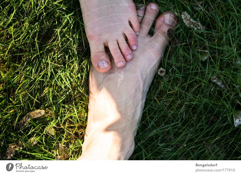 Human being Life Meadow Feet Friendship Power Masculine Success Team Touch Trust Contact Attachment Stress Toes Aggression