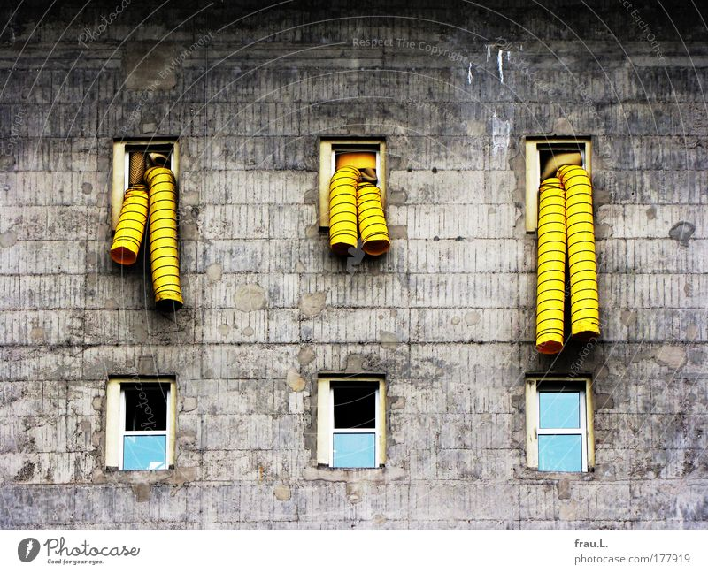 Old House (Residential Structure) Yellow Dark Window Wall (building) Architecture Gray Building Wall (barrier) Facade Concrete Change Might Manmade structures