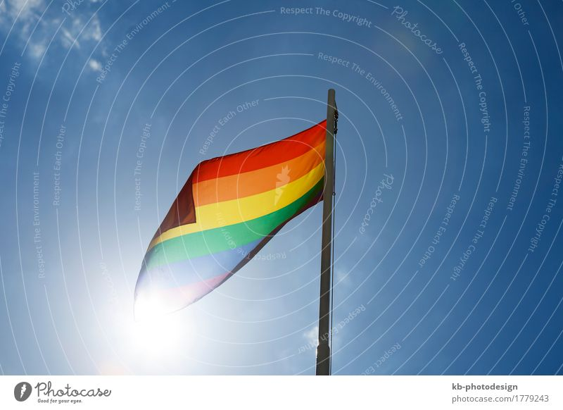 Rainbow flag on a flagpole in front of blue sky Lifestyle Homosexual Wind Sign Flag Love rainbow flag relationship freedom discrimination gender respect