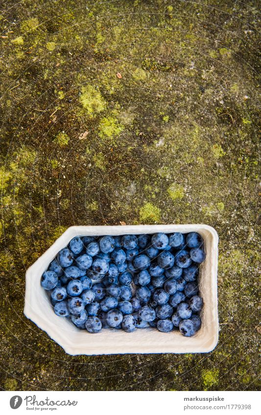 fresh organic blueberry harvest Food Fruit Blueberry Collection Harvest self-catering Urban gardening Nutrition Eating Lifestyle Healthy Eating