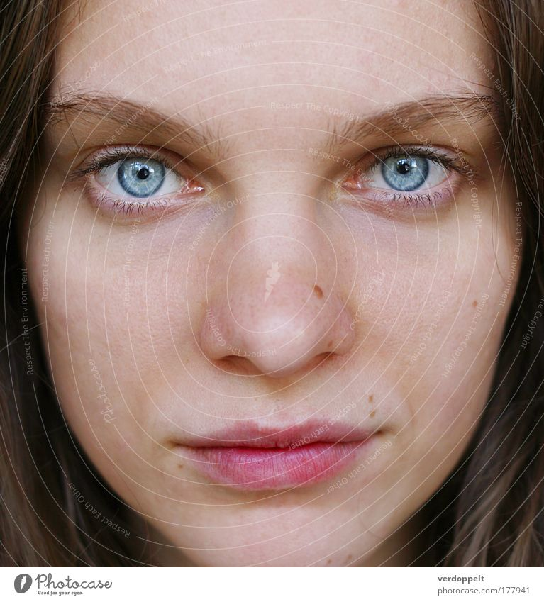 cold piercing cold Portrait photograph Woman 1 person Face Eyes Nose Lips look glance Blue Cold Intensive Emotions Human being Colour Mole Day
