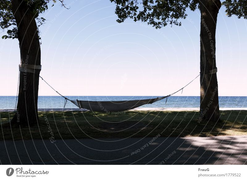 The summer was beautiful Relaxation Calm Meditation Summer Summer vacation Ocean Island Tree Beach Baltic Sea Gotland Hammock Rope To swing Safety (feeling of)