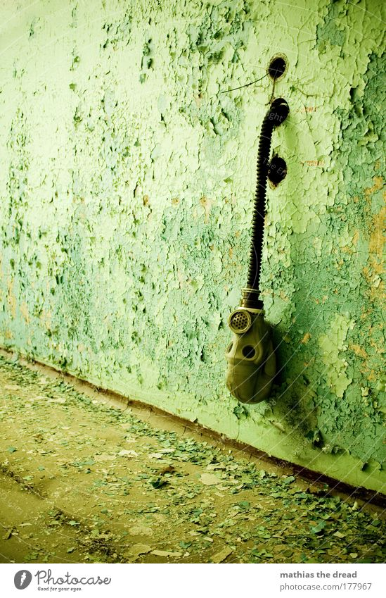 Old Green Black Loneliness Wall (building) Gray Stone Wall (barrier) Brown Dirty Facade Speed Gloomy Factory Mask Derelict