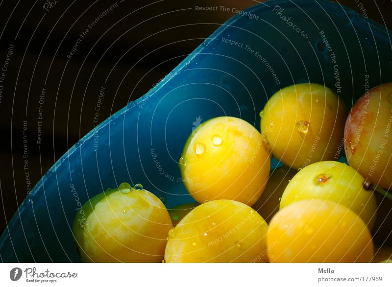 Nature Nutrition Yellow Colour Healthy Food Wet Fruit Fresh Sweet Round Lie Natural Delicious Appetite To enjoy