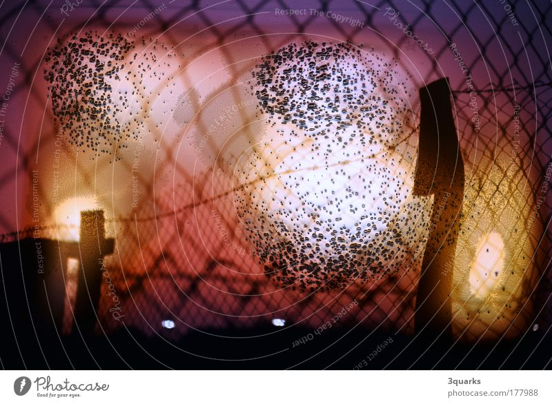wire netting Colour photo Exterior shot Experimental Deserted Evening Light (Natural Phenomenon) Sunrise Sunset Back-light Art Work of art Environment Fire