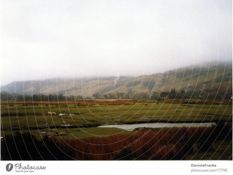 Highlands Scotland Meadow Fog Green Hill England Water Nature