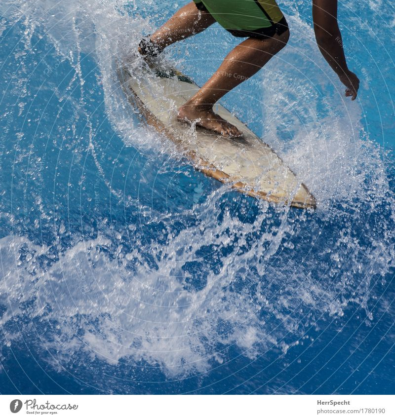 Blue Sports Legs Wild - a Royalty Free Stock Photo from