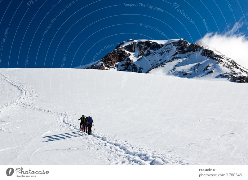 Mountaineers walking on Monte Rosa Glacier, Italy Human being Sky Nature Vacation & Travel Blue Landscape Clouds Winter Sports Snow Group Europe Adventure