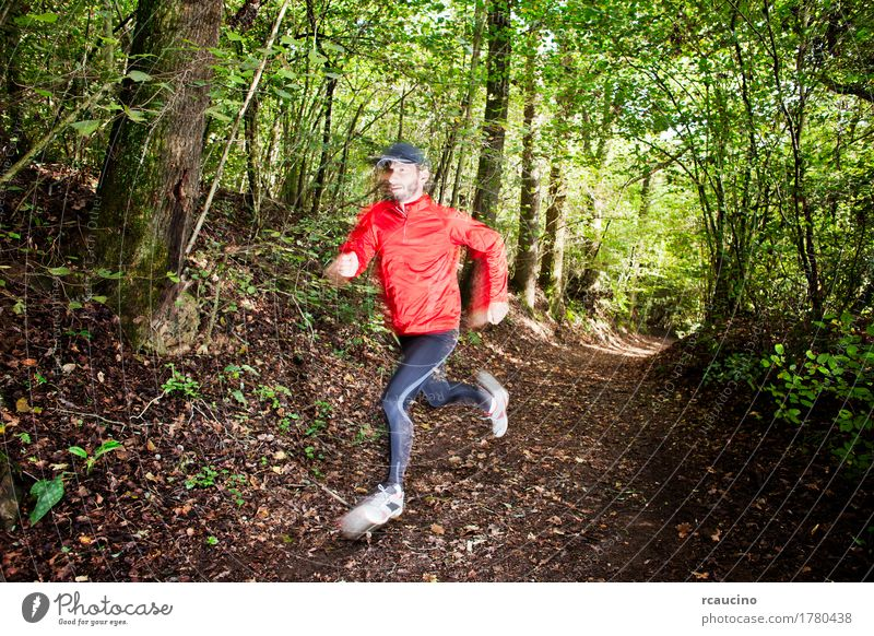trail runner running in the forest on a trail Lifestyle Joy Summer Sports Boy (child) Man Adults Feet Plant Tree Forest Lanes & trails Footwear Movement Red
