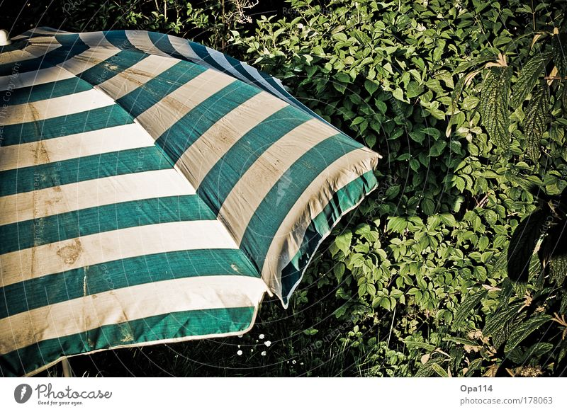 sun protection Colour photo Exterior shot Detail Pattern Structures and shapes Deserted Day Light Shadow Contrast Sunlight Sunbeam Forward Relaxation Calm