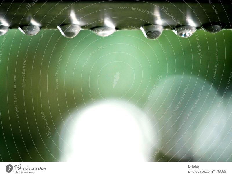 Water Beautiful White Green Summer Emotions Gray Sadness Rain Moody Wait Weather Environment Drops of water Grief Drop