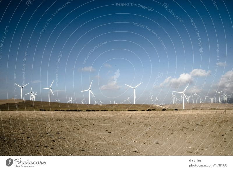 Nature Sky Blue Landscape Power Wind Environment Large Horizon Industry Energy industry Modern Future Clean Natural Wind energy plant